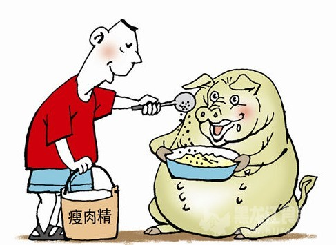 """""""瘦肉精""""现身沃尔玛 供应商注册地""""查无此人"""""""
